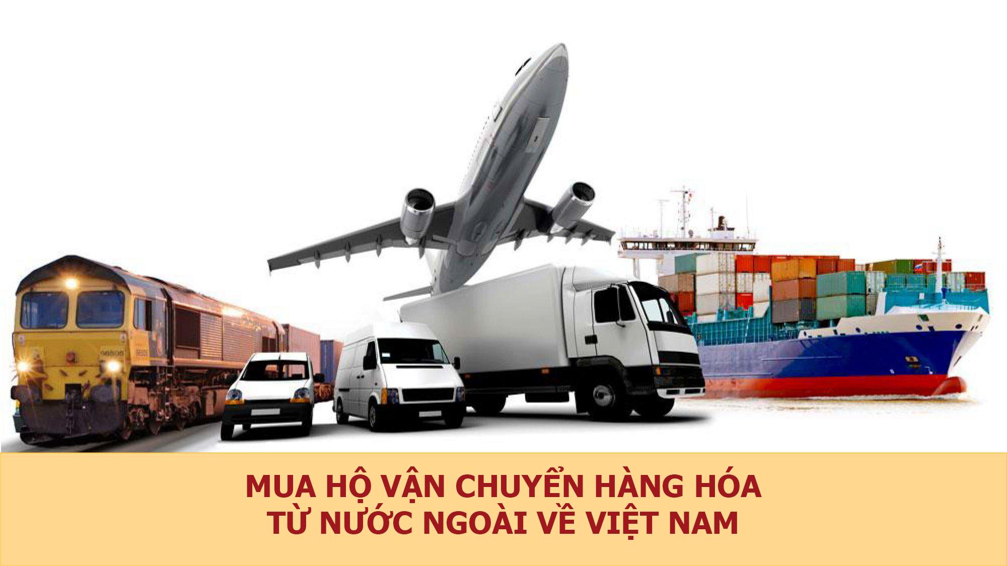 Quý Nam - đi đầu về ngành vận chuyển tại Việt Nam
