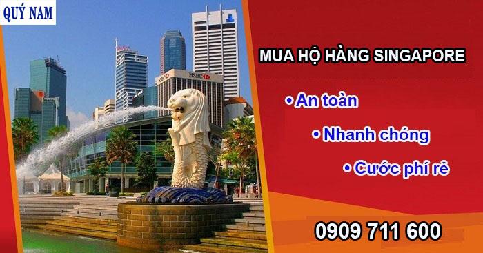 dịch vụ mua hộ hàng singapore