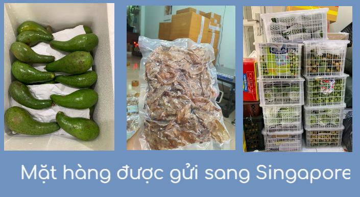 các mặt hàng thường được gửi sang Singapore